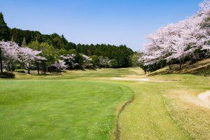<坂東ゴルフクラブ>フラットで広いフェアウェイが爽快感抜群